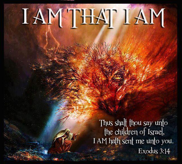 "I AM THAT I AM. - Exodus 3:14, ""And God said unto Moses, I AM THAT I AM: and he said, Thus shalt thou say unto the children of Israel, I AM hath sent me unto you."""