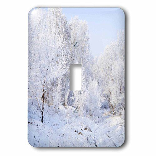 Yves Creations Winter Scenery - Snowy Trees - Light Switc... https://www.amazon.com/dp/B00AFSEE36/ref=cm_sw_r_pi_dp_V0aAxb22M2C4D