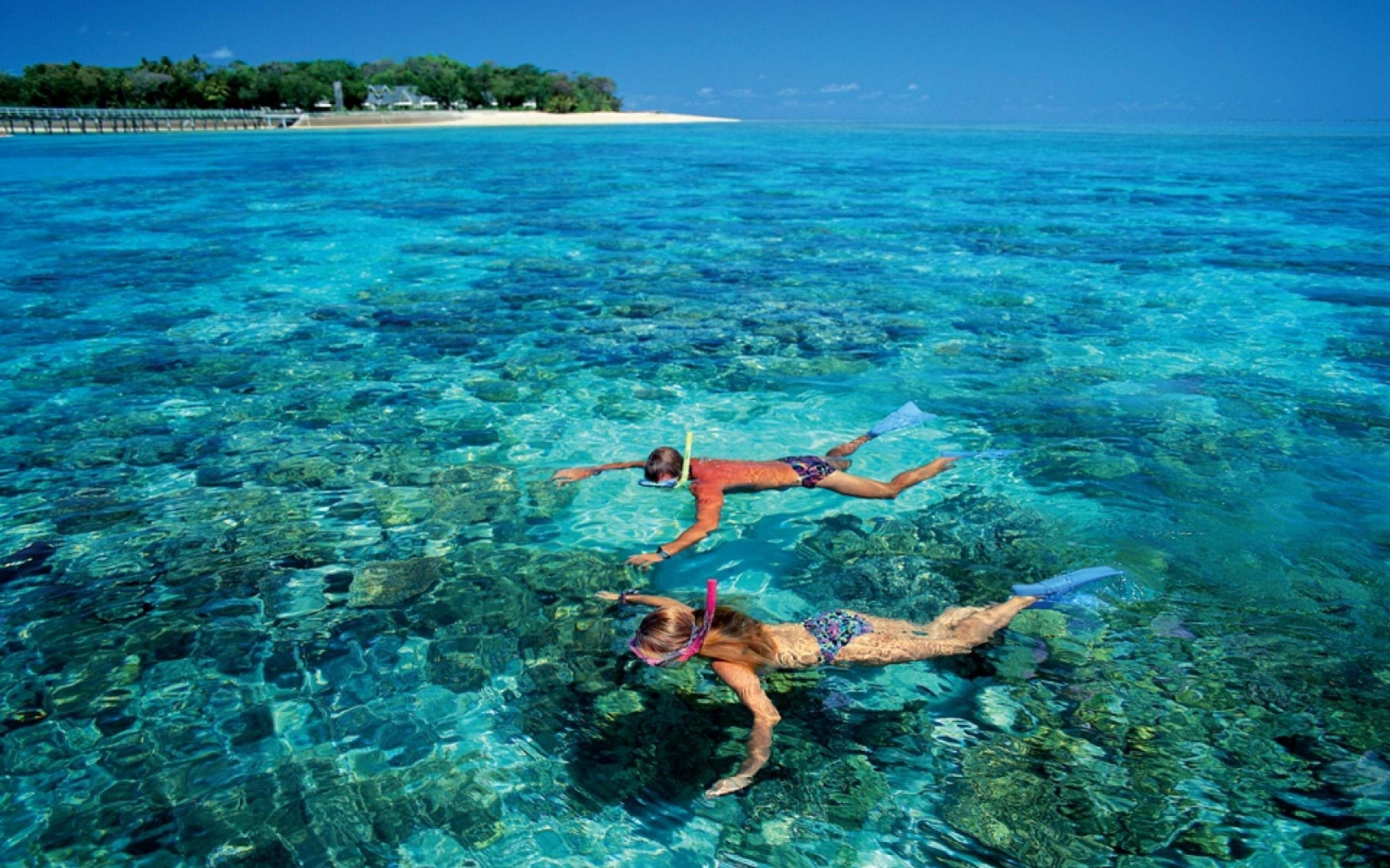 Experience This All Inclusive Tour That Will Take You To Snorkel In