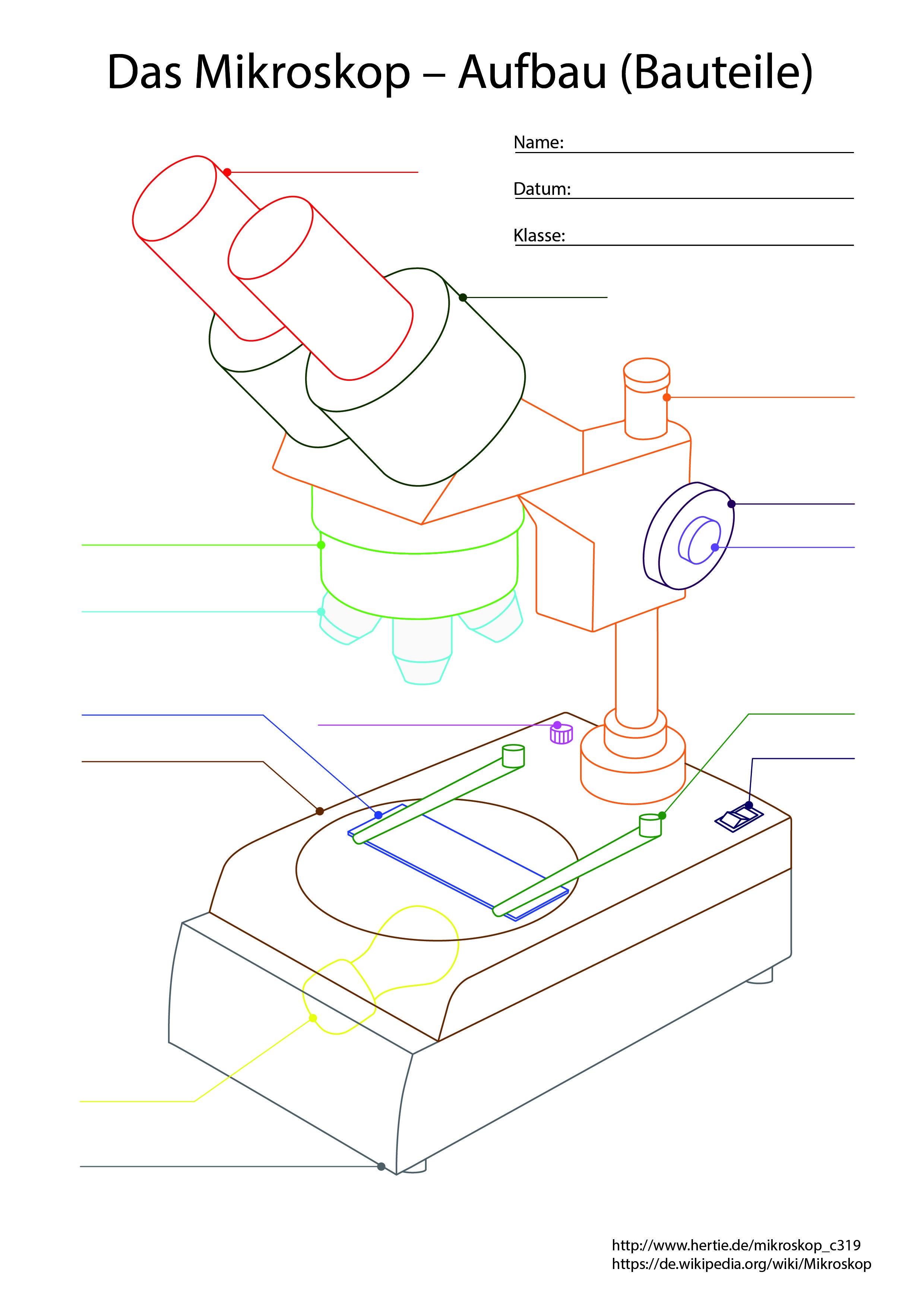 Die Version für Schüler   Das Mikroskop, ein Gerät, das uns ...