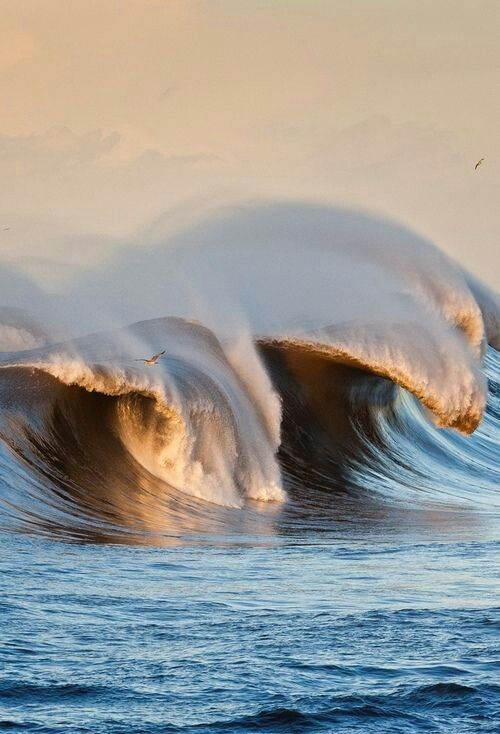 Big wave.... So beautiful...
