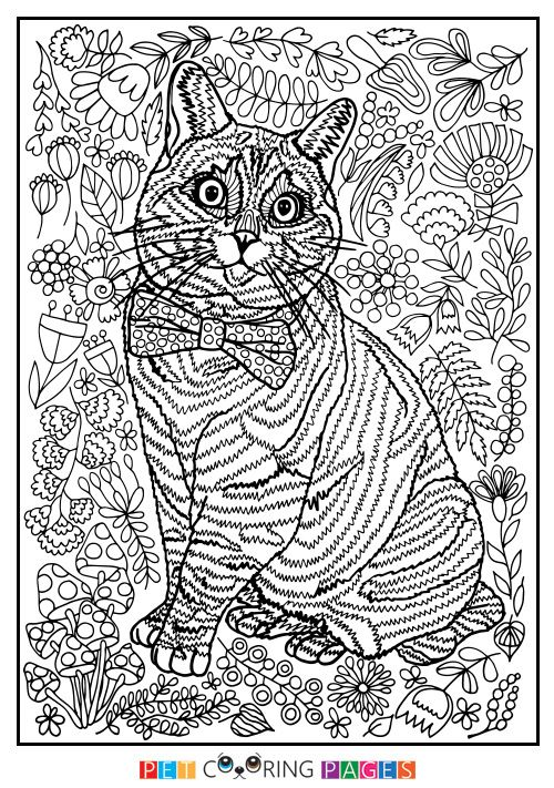 domestic cat coloring pages - photo#22