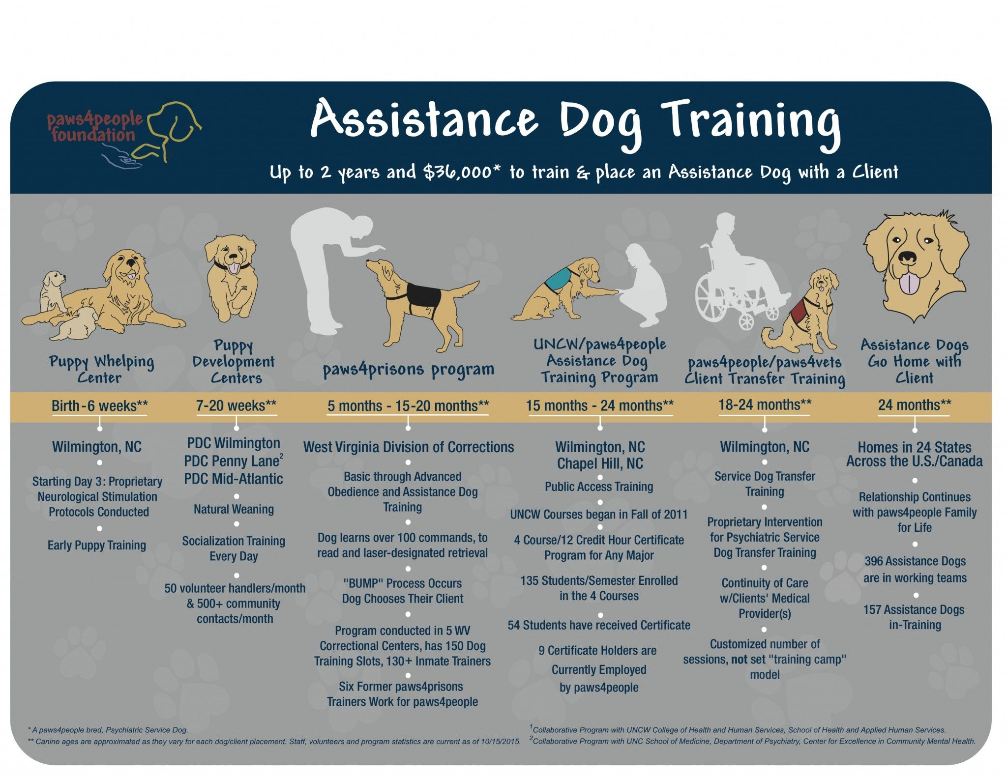 Pin On Training Service Dogs Ptsd