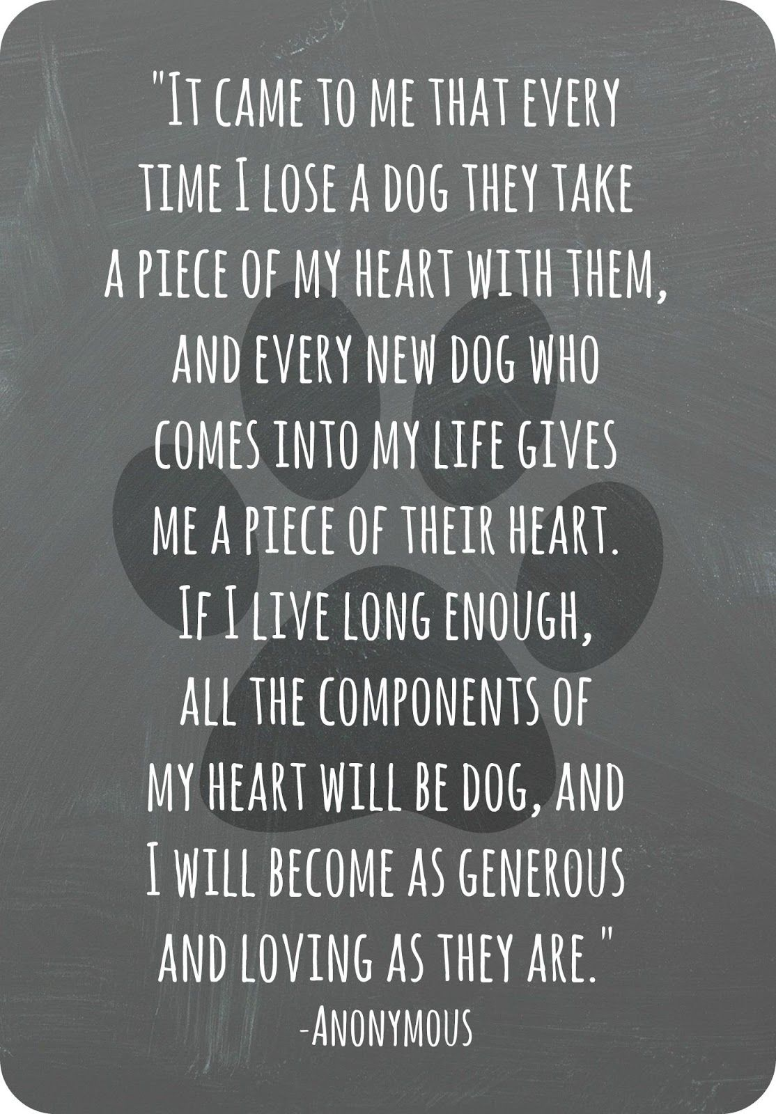 wildly simple Goodbye to a Good Friend Pet quotes dog
