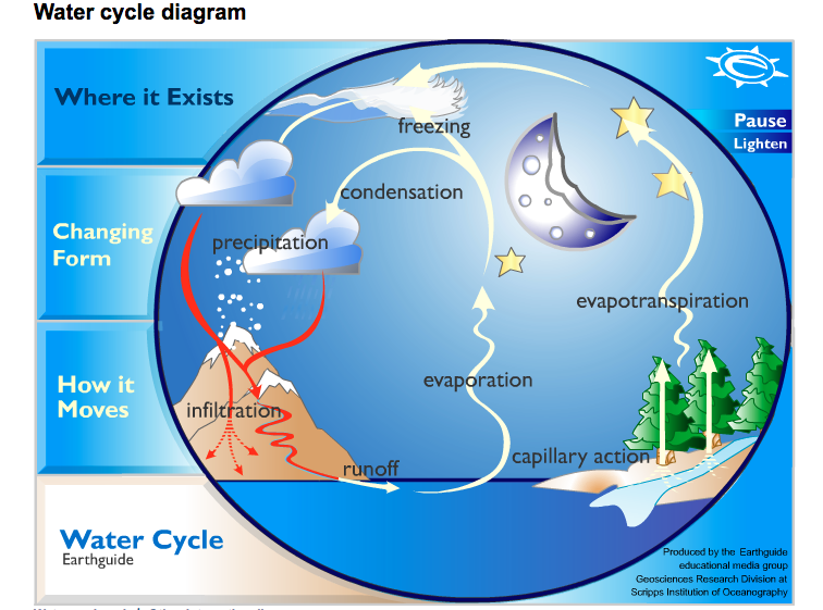 Interactive Water Cycle