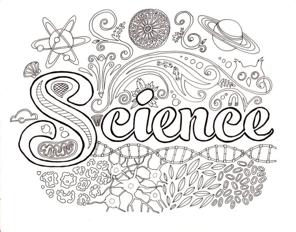 science coloring sheet - Google Search | Teacher Business ...