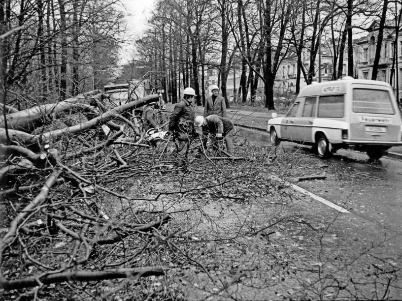 Hannover Eilenriede 1972 Der Orkan Quimburga Im November 1972