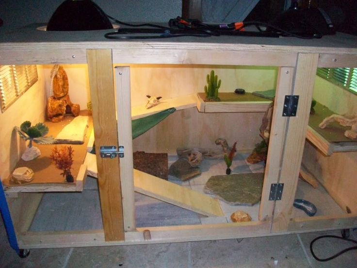Bearded dragon cage: | cages | Bearded dragon habitat, Bearded