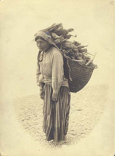 Quinault woman carrying wood in a utility basket on her back, Washington, 1906