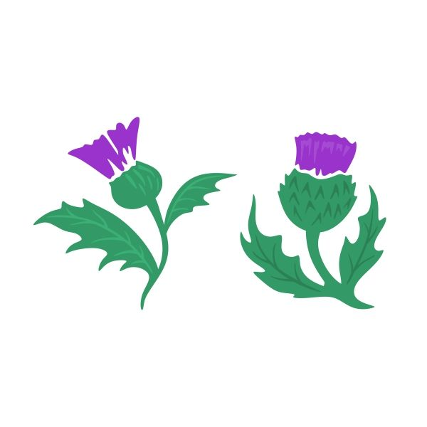 Flowers cut file for scrapbooking flower free flower svg file free cut - Scottish Thistle Cuttable Design Cut File Vector Clipart
