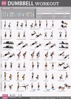 Dumbbell Exercise Workout Poster - Laminated - 19x27  Dumbbell Exercise Workout Poster  Laminated  19x27   Want tight and toned abs sculpted arms and shoulders and hot-in-heels-legs? Discover the best dumbbell exercises recommended by the Worlds Top Certified Personal Trainers for toning and tightening   #19X27 #Dumbbell #dumbbellworkoutforgolfers #dumbbellworkoutforskinnyguys #dumbbellworkoutforslimarms #dumbbellworkoutforswimmers #dumbellworkoutforwomen #Exercise #Laminated #poster # #dumbbe #dumbbellexercises