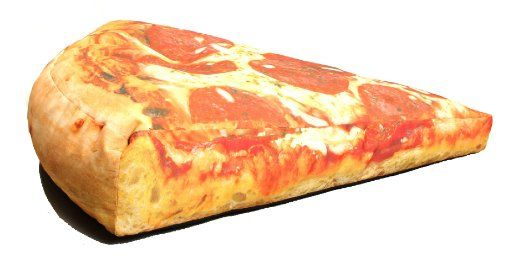 Pizza Beanbag Chair Potential Dog Bed Around The House