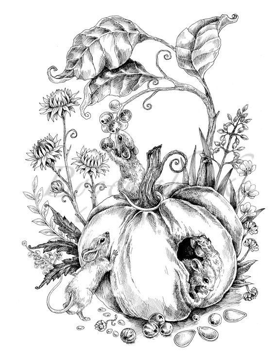 Pin On Adult Coloring Pages Vintage