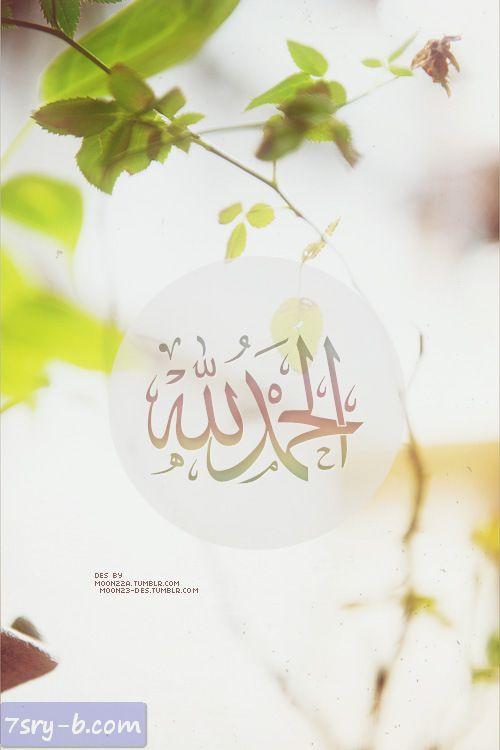 صور الحمد لله صور مكتوب عليها الحمد لله خلفيات ورمزيات الحمد لله جميلة وجديدة Islamic Art Calligraphy Islamic Caligraphy Art Calligraphy Art