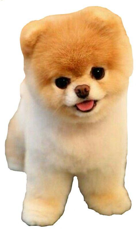 'Cute Boo Puppy' Sticker by Vitalia