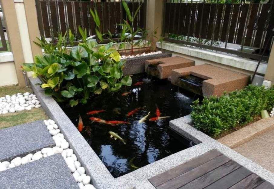 modern koi pond Buscar con Google Koi pond design, Koi