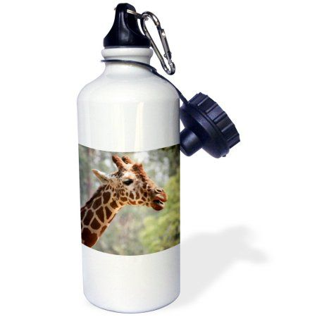 3dRose Reticulated giraffe, San Francisco Zoo, CA - US05 TAU0124 - Tananarive Aubert, Sports Water Bottle, 21oz