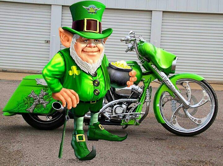 Happy St Patricks Day Every One Harley St Patty S Day