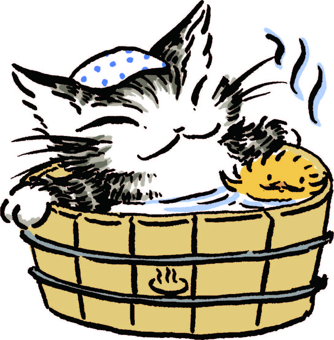 Dayan In Wachifield のアイデア 投稿者 Wasabi さん 猫の