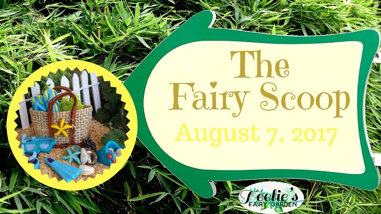 The fairy scoop august