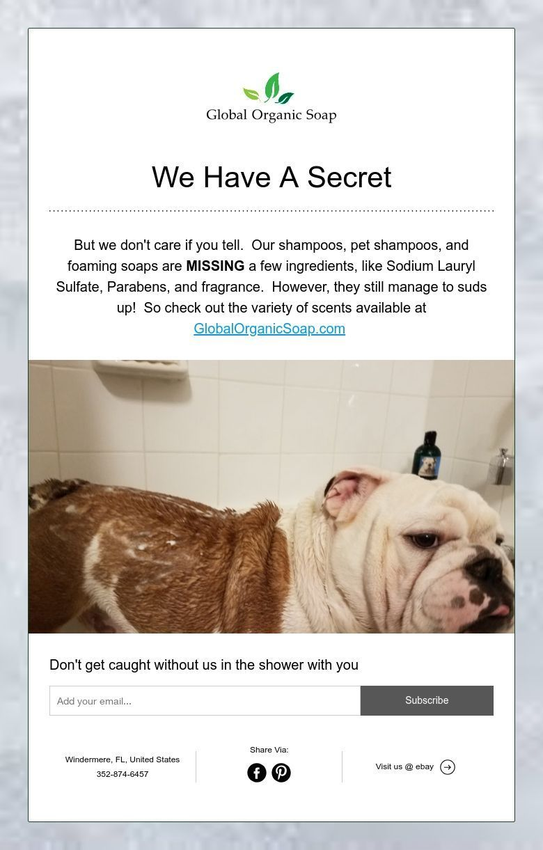 We Have A Secret Pet Shampoo Foam Soap The Secret