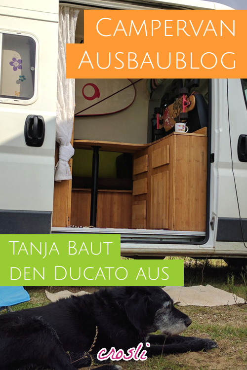 mein fiat ducato camper ausbau ducato camper camper und campingbus ausbau. Black Bedroom Furniture Sets. Home Design Ideas