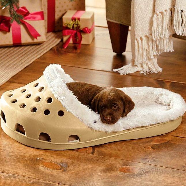 Photo of 15 stunning pet bed ideas – decorative design