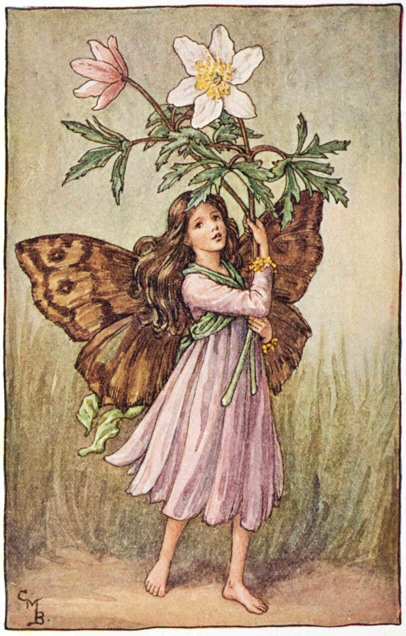 Image result for spring fairies