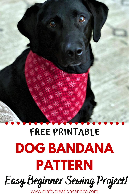 Medium Reversible Pet Bandanna