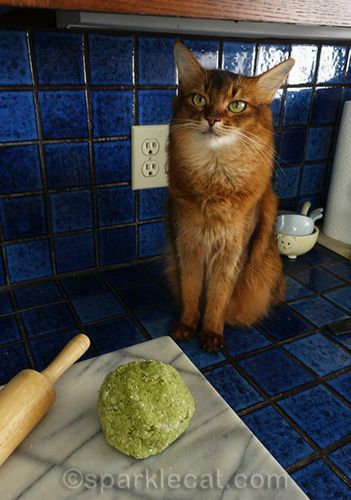 Homemade Chicken And Spinach Cat Treats With Images Cat Treats Cat Treats Homemade Cats
