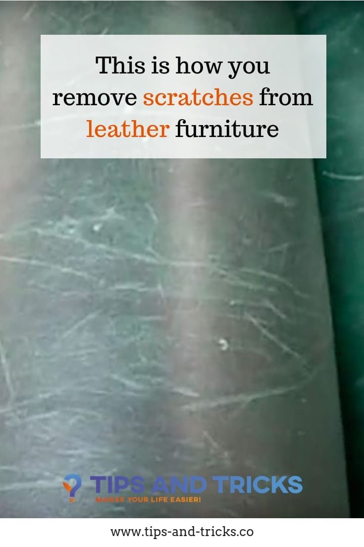 Remove Cat Scratches From Leather Sofa