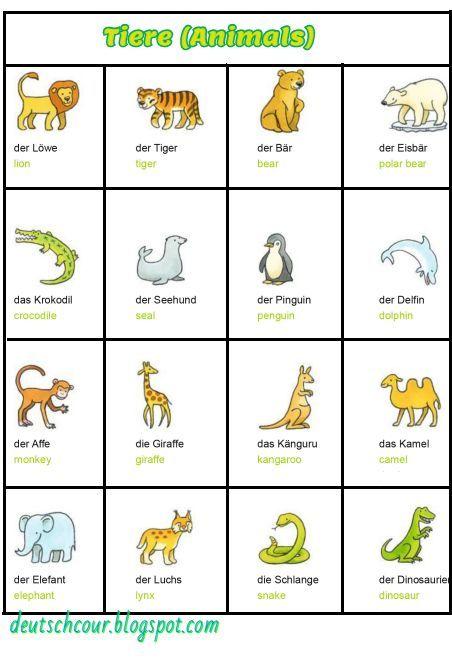 Deutsch lernen Tiere (Animals) Bildwörterbuch