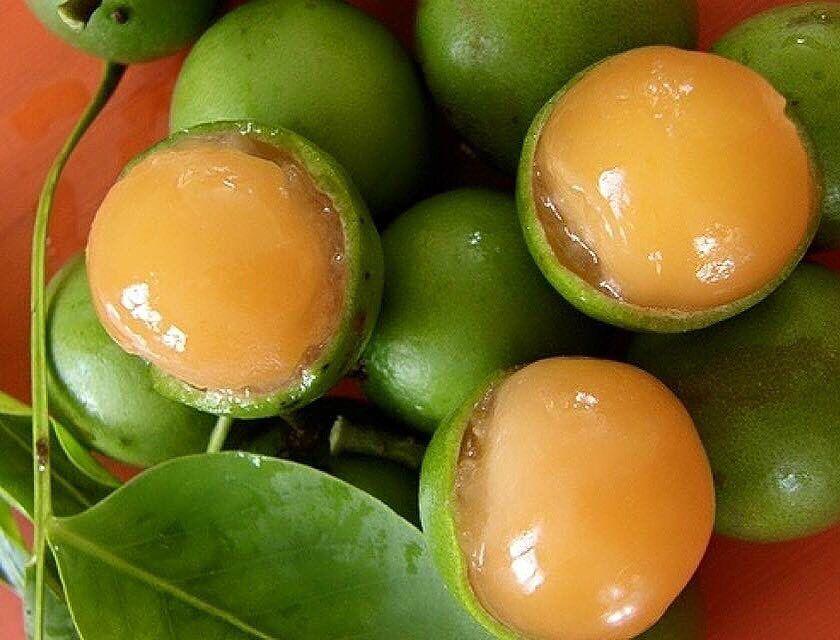 #jamaicanfood #jamaicancuisine #goldenkrust #jerkchicken #자메이카음식 #존맛 #꿀맛 #먹방 #먹부림 #먹스타그램 #맛스타그램 by seoulitenewyorker