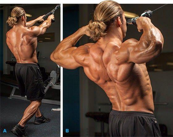 10 Rear Delts Shoulder Workout to Stimulate Growth   Pinterest ...