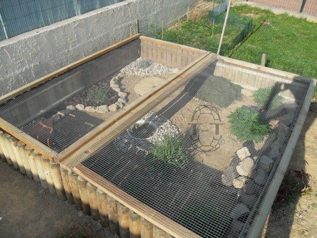 Exemples enclos pour bebes ou juveniles terrarium for Fabrication cage oiseaux exterieur