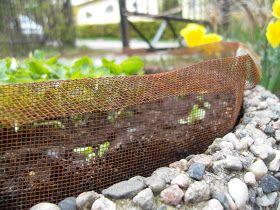 Brunsneglene er alleredei hagen og sneglekrigen er i gang igjen.I fjor var jeg kreativ og lagetfleresneglegjerder rundt omkring i hagen....