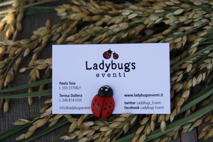 Ladybugs eventi