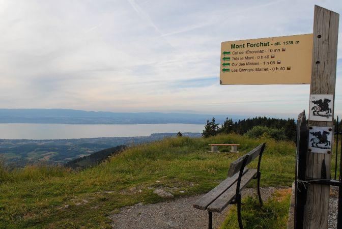 Le Mont Forchat Tres Le Mont Le Mont Forchat Lac Leman Haute Savoie Paysage