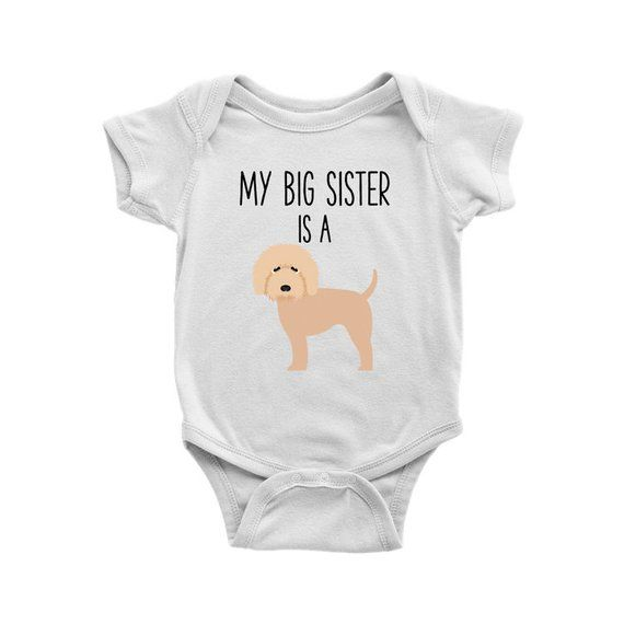 52ed5c4b9 My Big Brother / Sister is a Goldendoodle Doodle Baby Bodysuit, Funny Dog  Lover Baby Clothes, Baby B