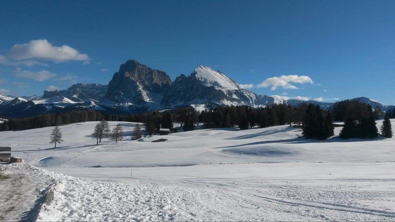 Seiseralm Dolomiten Italy