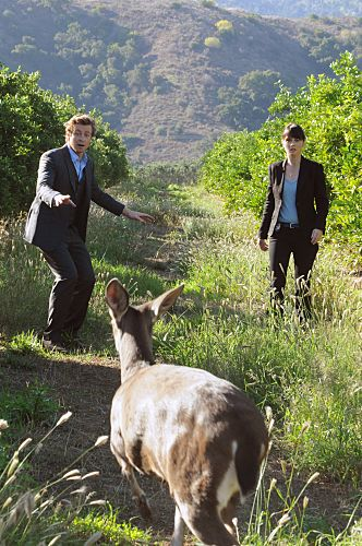 red moon mentalist - photo #29