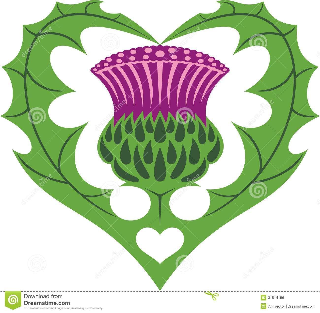 Scottish Heart Thistle Tattoo Royalty Free Stock Image Image