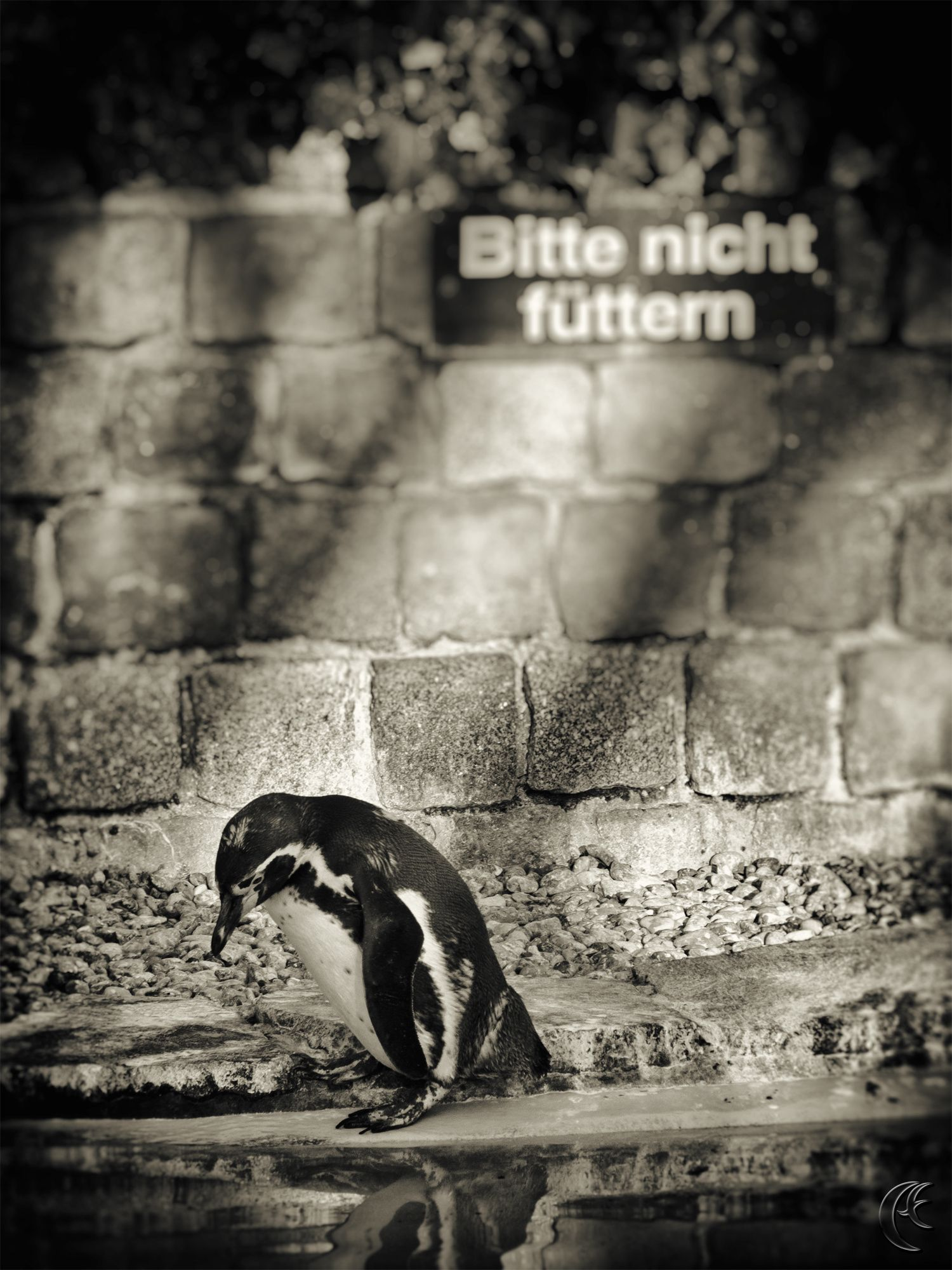 Do not feed the animals! by anDrea Fritz on 500px