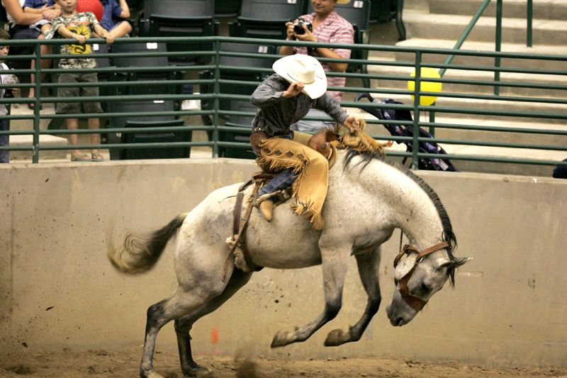 Rodeo Cowboy In Conroe Texas Rodeos In Texas Real