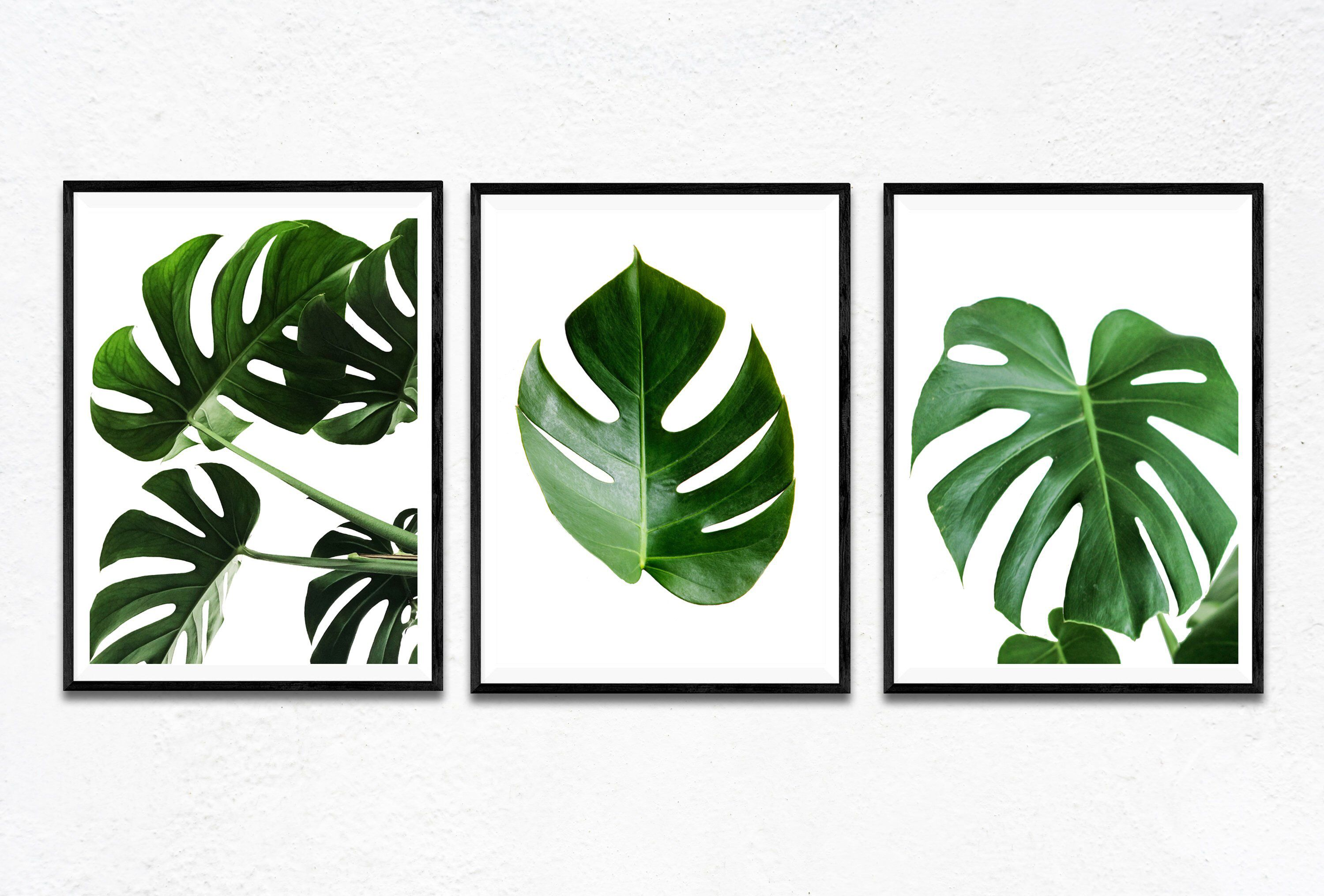 3 Piece Wall Art Monstera Leaves Set 3 Piece Decor Wall Art Set 3 Tropical Leaf Prints Palm Leaf Wall Art