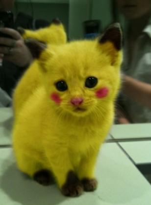 Pikachu is among us