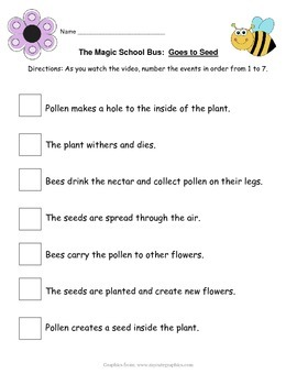 Magic School Bus Goes To Seed Activity Plant Cycle Magic