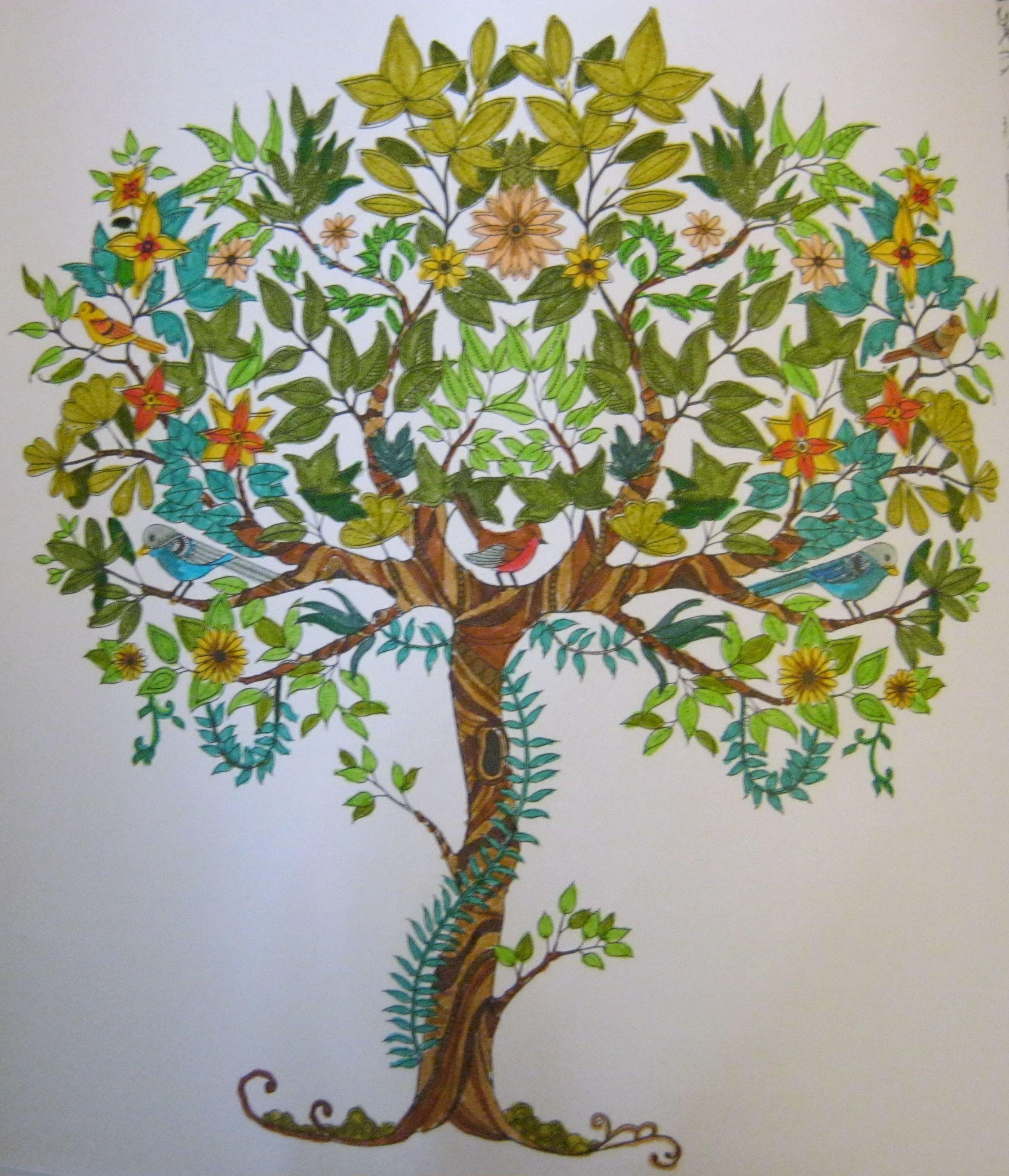 Coloriage D Après Le Livre Jardin Secret Carnet De