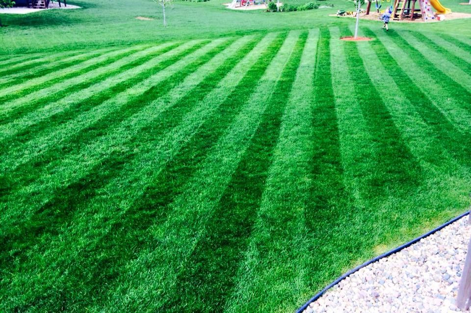 LawnMowingIsaacs and lawn care are easy when you let the