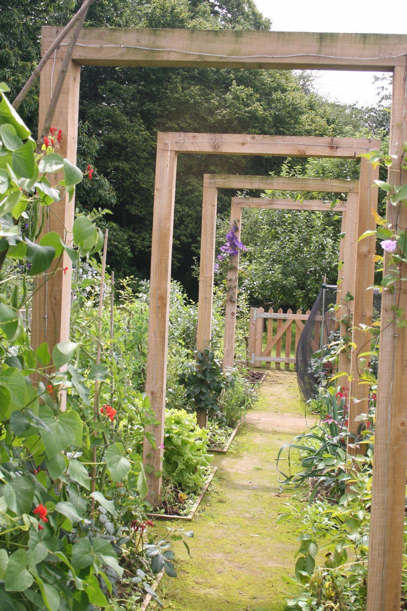 Diy Vegetable Garden For Beginners Raised Beds How To Build